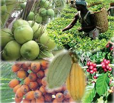 Horticulture Sector